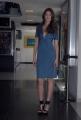 mattoni/markanews 18/06/08 roma presentazione del film _ go go tales_ nella foto:  bianca balti