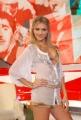 gioia botteghi/markanews 19/09/08 roma,  carlo conti nella trasmissione I migliori anni raiuno in onda in diretta ieri sera con sofia bruscoli