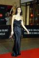 mattoni/markanews 18/04/08 roma passerella per i premi david di donatello, nella foto anna safrancich