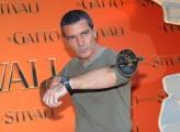 foto/IPP/Gioia Botteghi 25/11/2011 Roma, Presentazione del film IL GATTO CON GLI STIVALI, nella foto Antonio Banderas