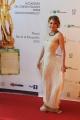 Roma14/06/2013 serata Premio David di Donatello, nella foto: Paola Minaccioni