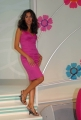 Caterina Balivo Festa Italiana studio