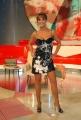Chiodo, i migliori anni prima puntata raiuno 19/09/08 Roma condotto da Carlo Conti, con Roberta Giarrusso