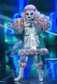 Foto/IPP/Gioia BotteghiRoma 10/01/2019 nuovo programma di Rai uno Il cantante mascherato, nella foto , il barboncinoItaly Photo Press - World Copyright