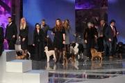 10/03/09 Roma prima puntata di INCREDIBILE raiuno, nella foto : cani in studio