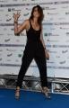 Foto/IPP/Gioia Botteghi29/05/2018 Roma, presentazione delle cinquine dei premi Nastro D'Argento, nella foto kasia Smutniak Italy Photo Press - World Copyright